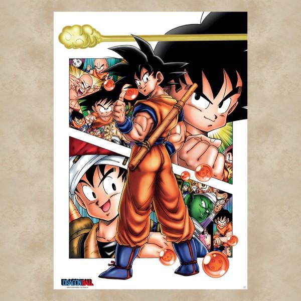 Son Goku Story Maxi Poster - Dragon Ball Z