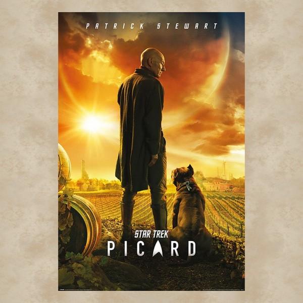 Picard Maxi Poster - Star Trek